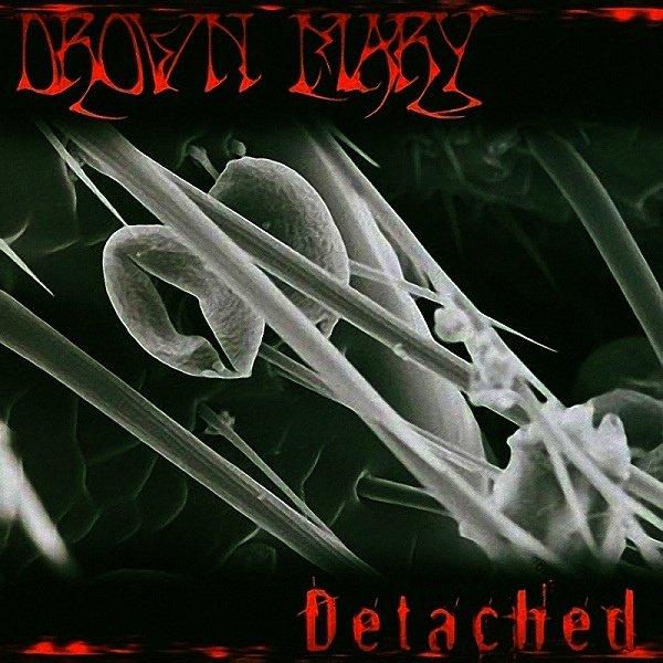 画像1: [DRAWN MARY]-Detatched- (1)